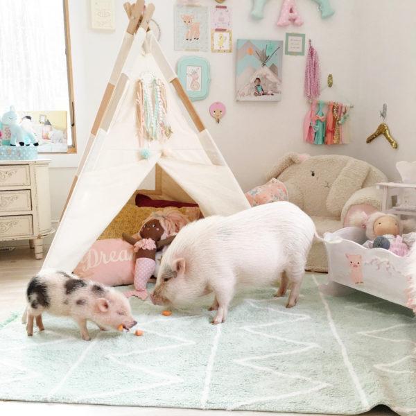 alfombra lavadora niños
