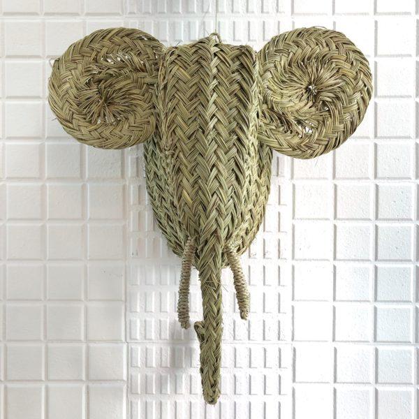 cabeza elefante